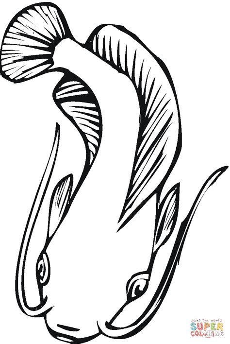 catfish  coloring page  printable coloring pages
