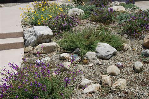landscape design california drought tolerant landscape design sacramento designs california thespiritofagriculture com