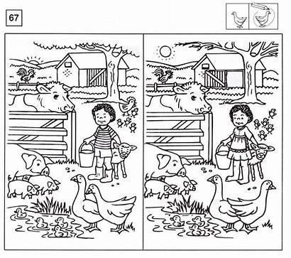 Spot Difference Worksheets Garden Activity Nz Via