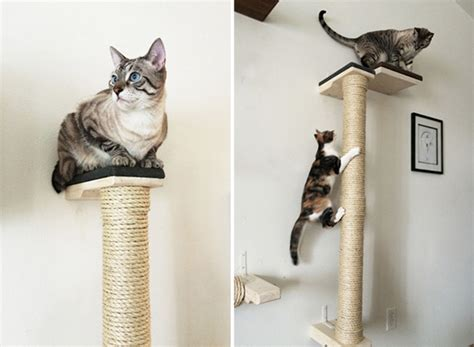 cat tree condo with hammock save space in style with these wall mounted cat scratchers