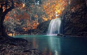 nature, , waterfall, , trees, , landscape, , roots, , fall, , tropical, , colorful, wallpapers, hd, , , , desktop, and
