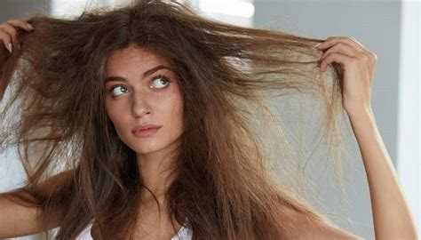 want to find out the best hairstyles for damaged hair