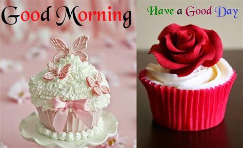 good morning ecards morning hd wallpapers festival
