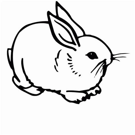 Pin Conejo On Pinterest