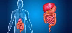 O que é a Doença de Crohn - Mercado Bom Sucesso