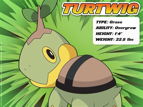 pokemon turtwig evolution