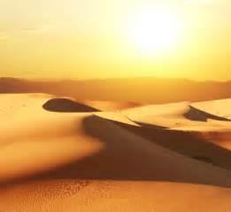 Top Vacation Spots: Desert Biome