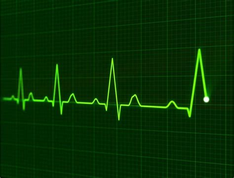 Heartbeat out of sync - BioNews Central