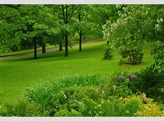 Wallpaper Spring Scenes Gallery Wallpaper And Free Download