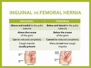 Study Medical Photos  Brief Description Of Abdominal Wall