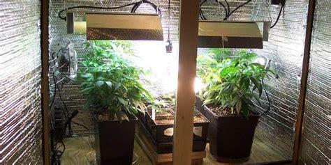 build  budget friendly cannabis grow room