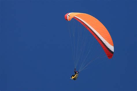 Paraglider Free Stock Photo - Public Domain Pictures
