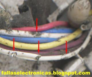 lavadora mabe lma84dbp comido por la rata fallaselectronicas com