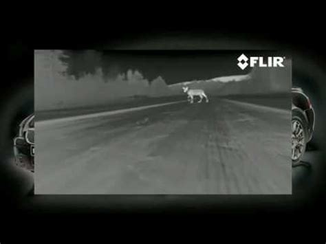 FLIR PathfindIR Thermal Imaging Night Vision Car System ...