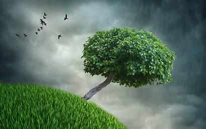 Rain Desktop Storm Nature Wallpapers Resolution Spring