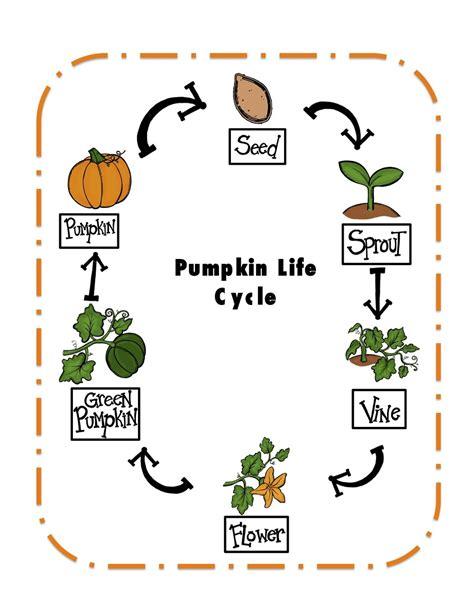 preschool printables pumpkin cycle printable 759 | 9252a6145c9c0b8deb29d10bad0466b4