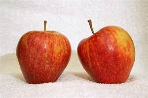 Cameo  Apple