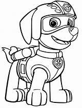 Zuma Patrol Paw Coloring Pages Getdrawings sketch template