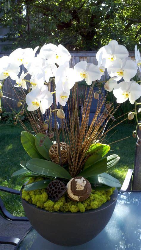 entretien orchidees en pot entretien des orchid 233 es savoir tout sur ces fleurs exotiques