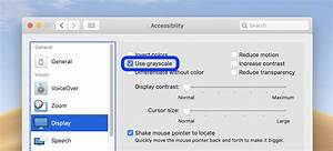 How To Switch Your Display To Use Grayscale On A Mac