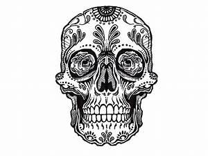 Sugar Skull Tattoo Pics On Paper For Men - Amazing Tattoo