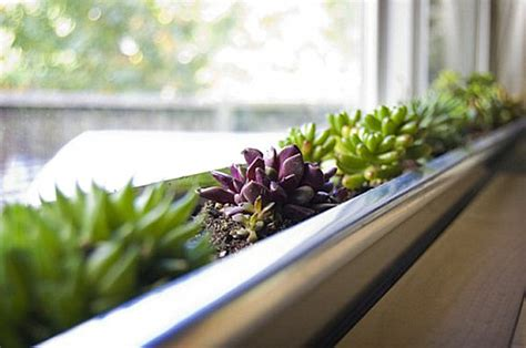Window Sill Garden Planters by Indoor Gardening Ideas To Beautify Your Space