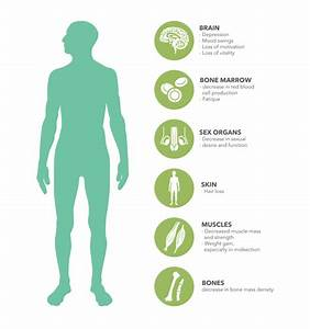 Men U0026 39 S Health  Wellness  U0026 Testosterone Program In Calgary