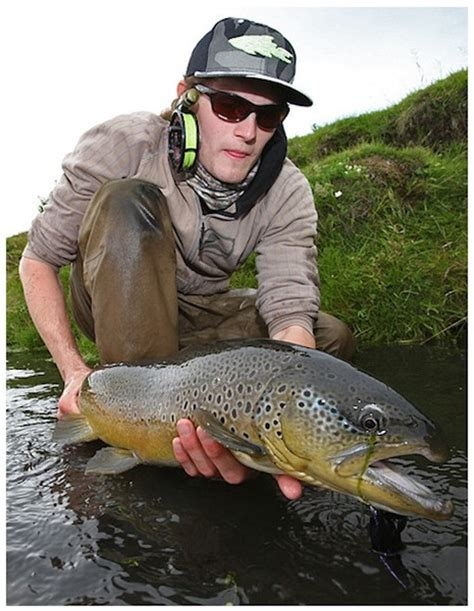 brown trout drowning worms