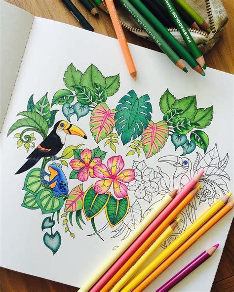 jungle drawing ideas  pinterest botanical