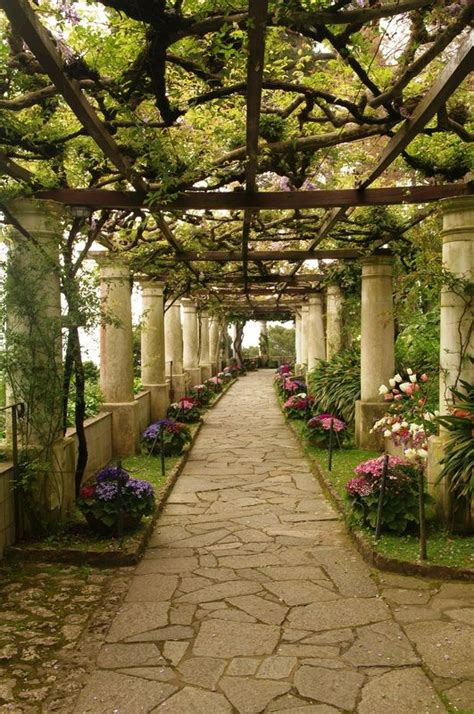 Capri Italy Gardens And Vines On Pinterest
