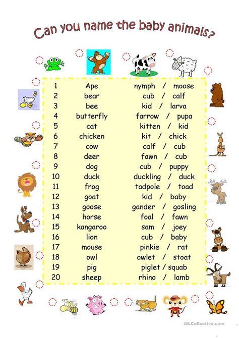 baby animals names worksheet 35 free esl baby worksheets