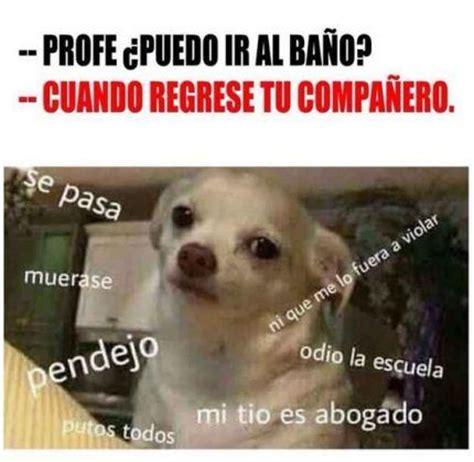 Memes Funny En Espaã Ol - m 225 s de 25 ideas incre 237 bles sobre memes graciosos en espa 241 ol en pinterest chistes divertidos