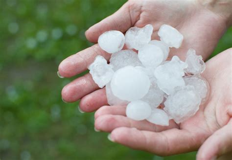 AcuRite Blog - 5 Weather Facts for Kids
