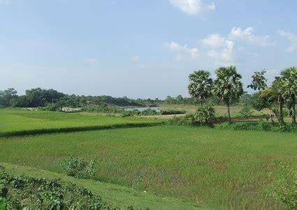 bangladesh photo gallerybangladesh photobangladesh