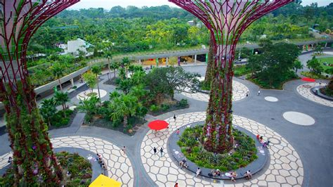 Hotel Near Garden By The Bay Singapore - gardens by the bay in singapur expedia de