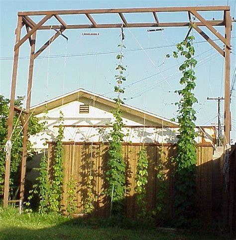 Hops Trellis Design by 195 Best Growing Hops Images On Brewing