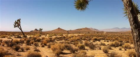 Major android releases have long been named after desserts. 350 Acre Mojave Desert Apocalyptic Production Location, Mojave, CA | Production | Peerspace