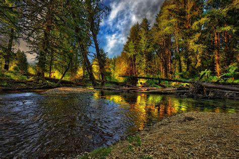 River landscape cool nice Nature landscape forest autumn ...