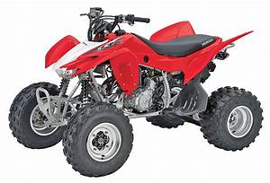 Buyer U0026 39 Guide  2014 Sport Quads