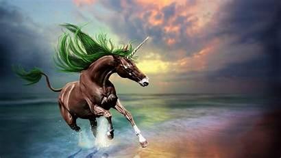Unicorn Desktop Mermaid Wallpapersafari Screen Recently Code