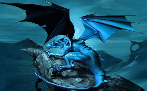 dragon  wallpapers  wallpapers pictures