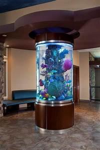 36 Fascinating Aquarium Design Ideas That Make Your Home