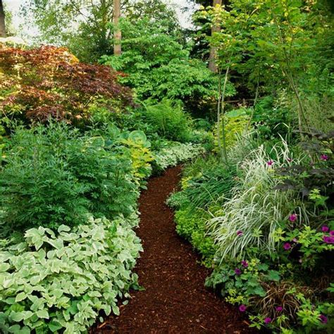 gardening shade stunning shade garden design ideas