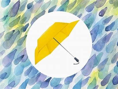 Umbrella Hedgehog