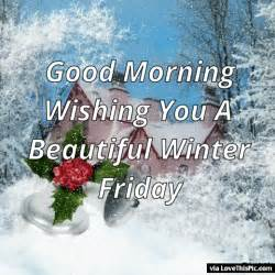 morning wishing you a beautiful winter friday pictures photos and images for