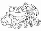 Harvest Coloring Pages Fall sketch template