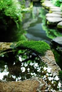 Moos Im Garten : japanischer garten das wunder der zen kultur ~ Pilothousefishingboats.com Haus und Dekorationen