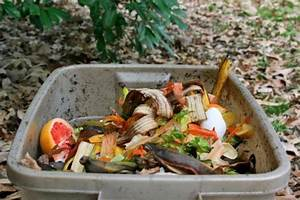 How To Start an Odor-Free Freezer Compost Bin as a City or ...