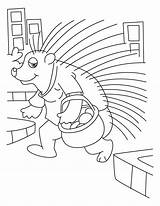 Porcupine Coloring Pages Quill Pig Sheet Getcoloringpages Library Clipart Cartoon sketch template
