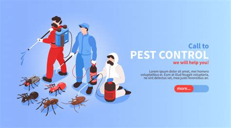 pest control house hygiene disinfection service isometric